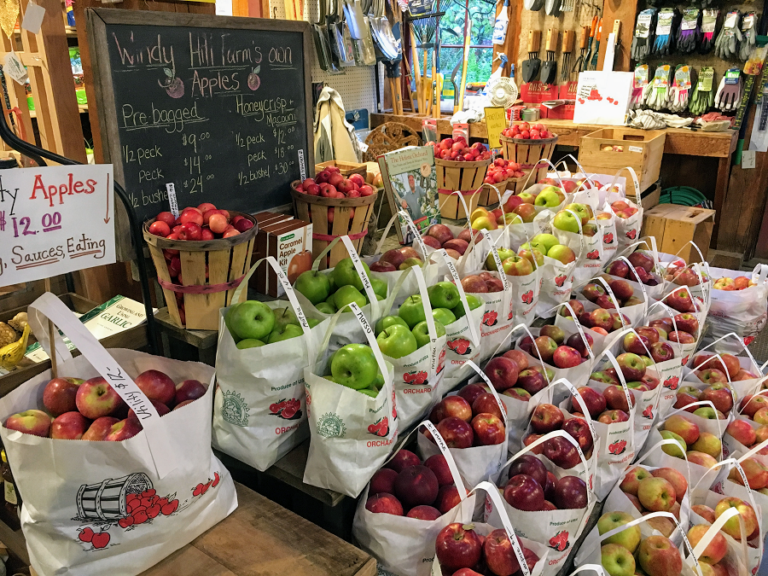 Celebrate Thanksgiving with Berkshire-Grown Apples